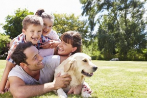 Automatic Vacuum Cleaners and Family Health